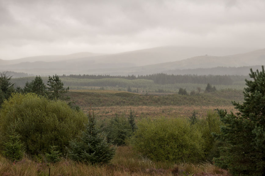 Galloway Forest Par