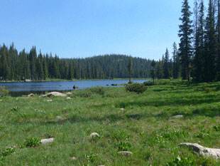 rabbit ears pass